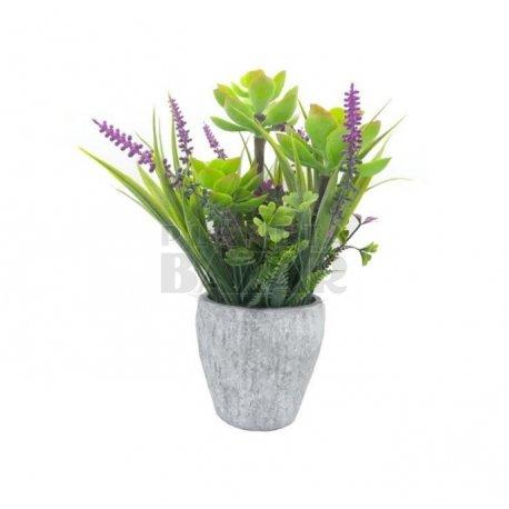 Bonsai Flores Lavanda 25 cm