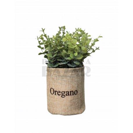Plantin Oregano En Canasto De Lino