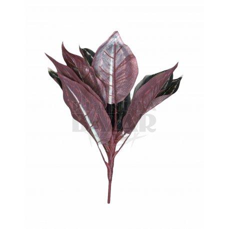 Planta De Cissus 60 cm