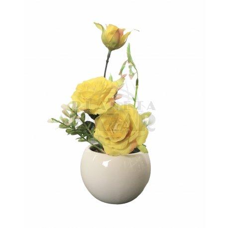 Planta Rosas Amarillas Con Maceta